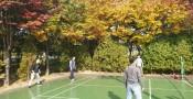 가을 간이 체육대회